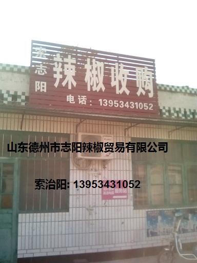 山东德州市志阳辣椒贸易有限公司