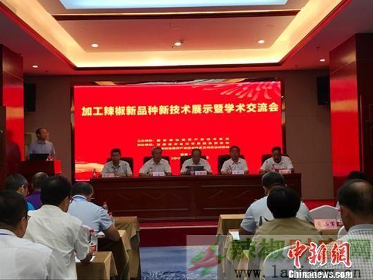 甘肃高技术综合化利用辣椒资源