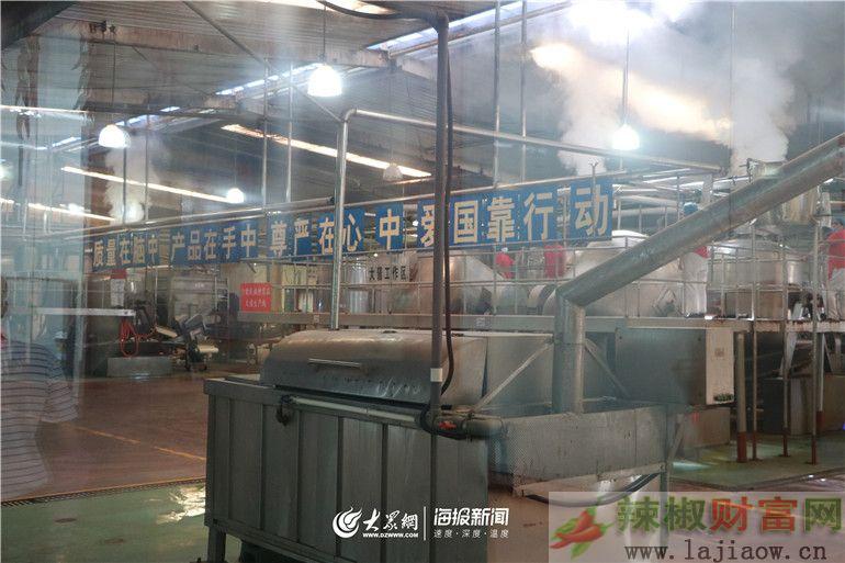 2019中国(德州)辣椒产业发展高层论坛成功召开